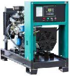 Газовая электростанция G29-1-RE-LF 26 кВт